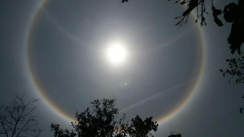 Sol Com Halo 8